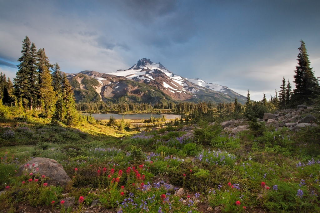 Mt Jefferson trail reopens after wildfire