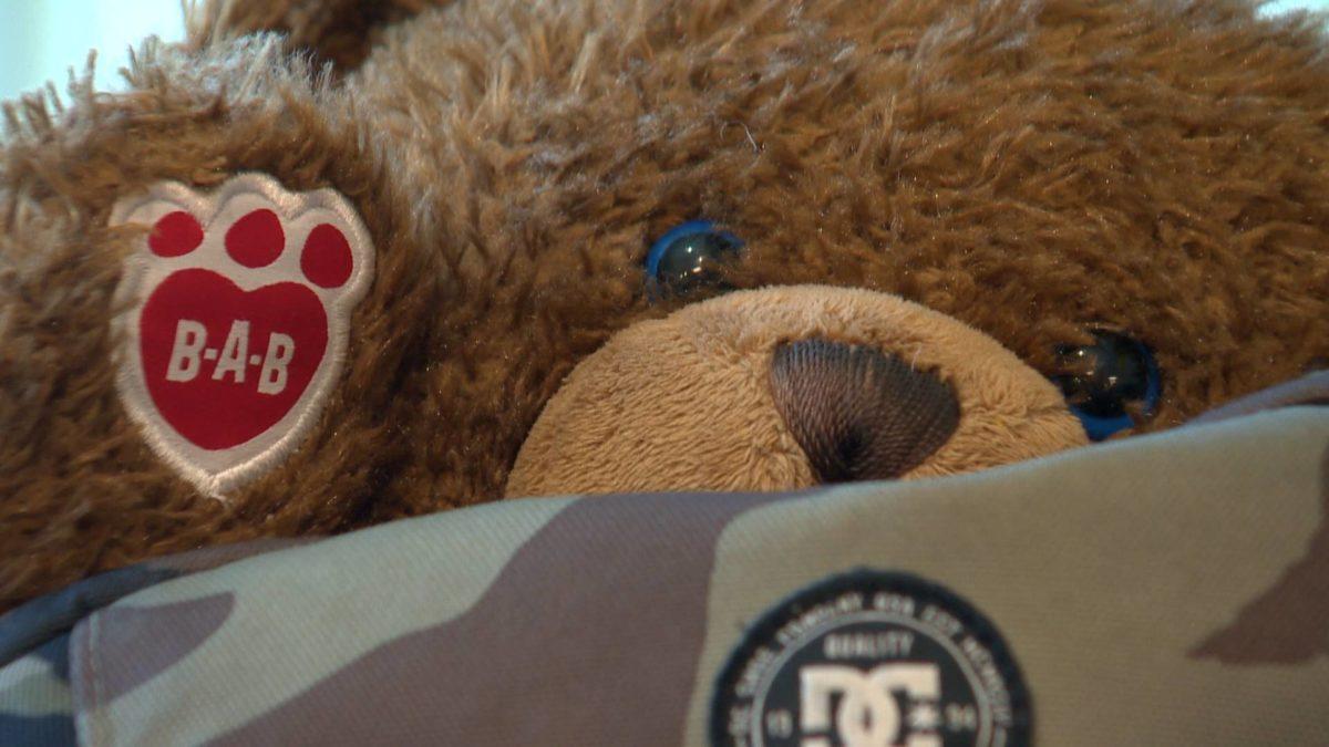 Novia Scotia Teddy